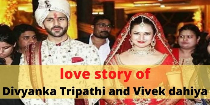Destiny put it all together: The love story of Divyanka Tripathi and Vivek dahiya