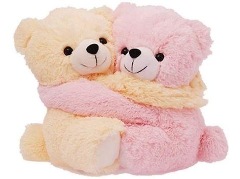 teddy bear couple